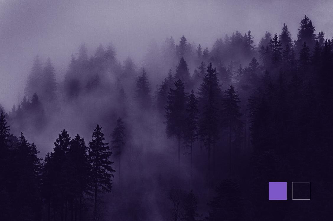 Ultra violet Pantone 2018 - duotone - dangeloweb