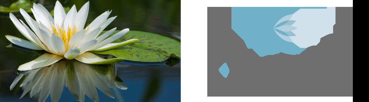 Branding K-Factory - Dangeloweb